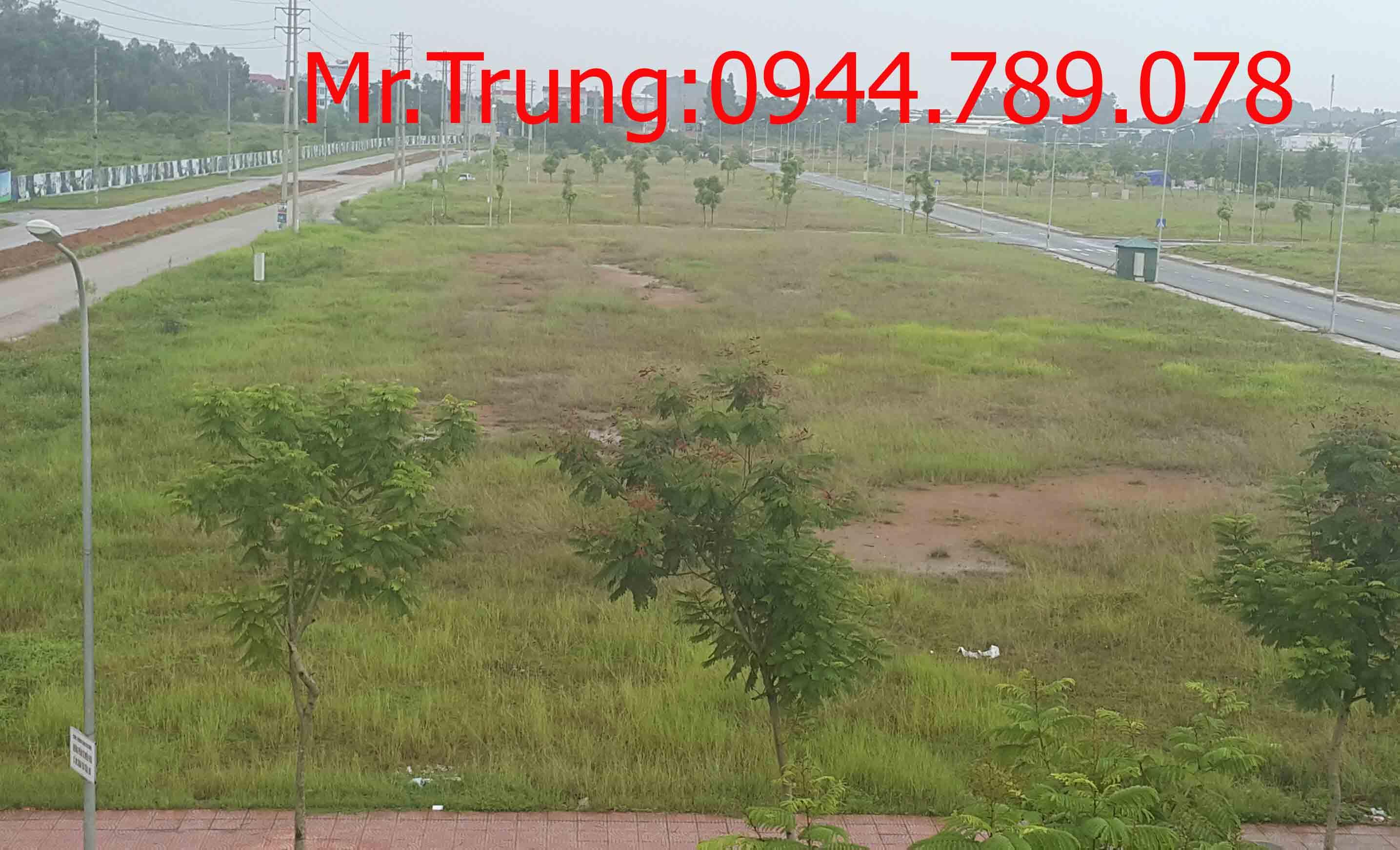 Bán đất khu đô thị nam vĩnh yên diện tích từ 160m2 đến 500m2 với giá chỉ từ 8,11 triệu/m2