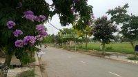 Mua đất KĐT mới Nam Vĩnh Yên, diện tích 300m2, đủ hướng