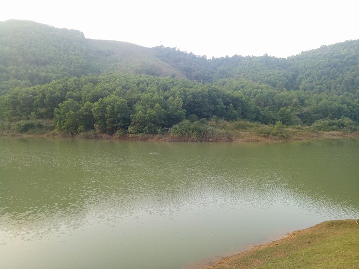cần chuyển nhượng 50 ha đất tại huyện kỳ sơn tỉnh hòa bình